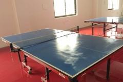 sac table tennis area